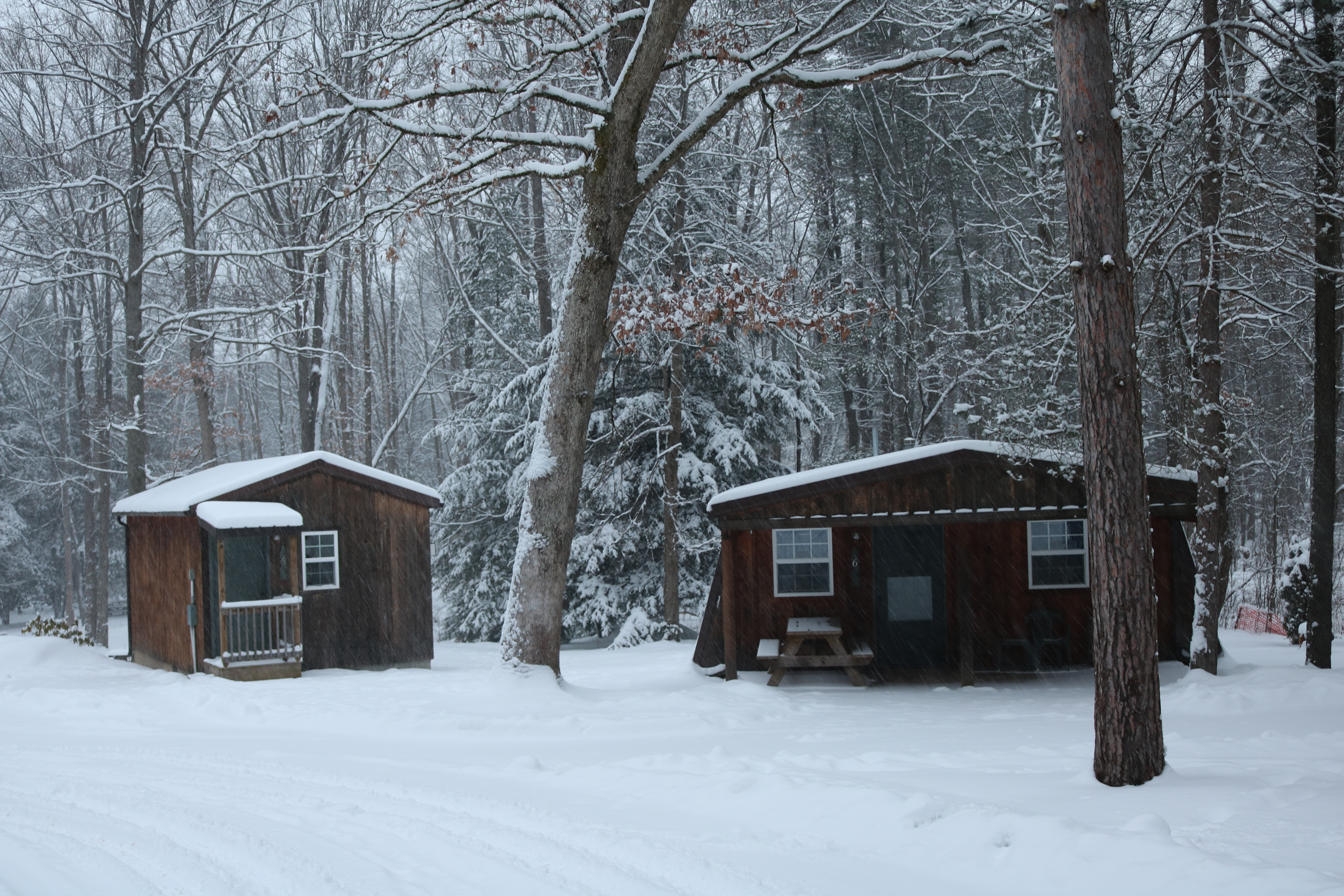 log lake cabin vacation locust authentic rental living cabins village in dsc winter rentals